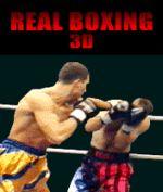 Handyspiel Real Boxing 3D